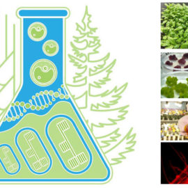 conference-cytobiology-and-plant-biotechnology